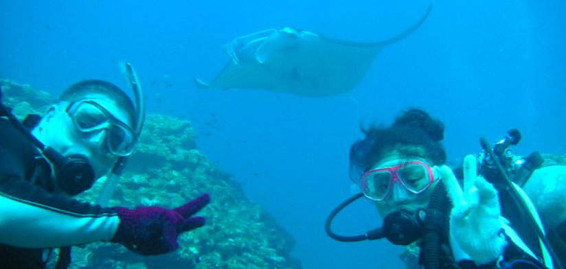 Diving With Mantas in Ishigaki